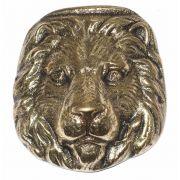 Cara de Le�o em Bronze Maci�o