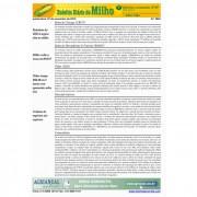 Boletim Di�rio de Milho - Via Email