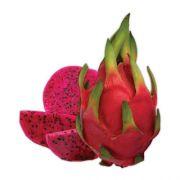 Mudas De Pitaya Vermelha (kit Com 5 Mudas)